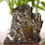 Stosunek ilości oliwinu do frakcji metalicznej może się zmieniać zależnie od okazów - nawet tego samego meteorytu.