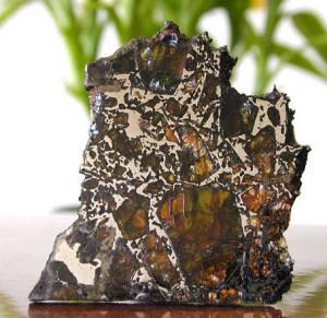 Eagle Station pallasyt. Stosunek ilości oliwinu do frakcji metalicznej może się zmieniać zależnie od okazów – nawet tego samego meteorytu.