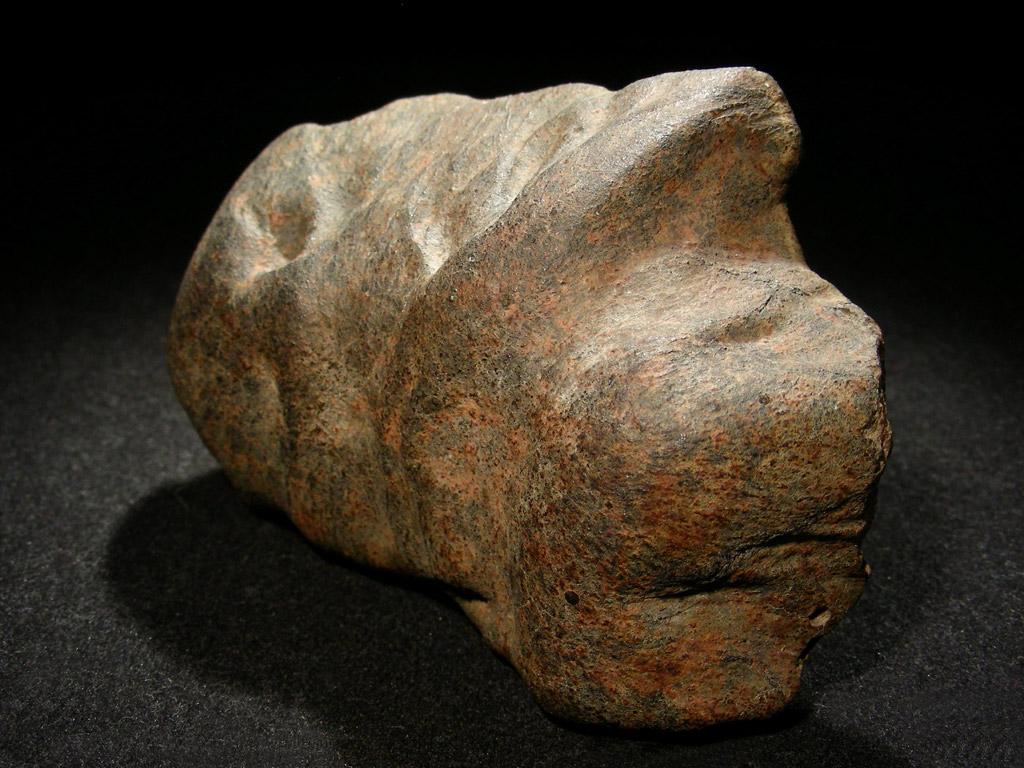 Gao-chondryt-H5. Bardzo charakterystyczny zaokrąglony kształt - typowy dla meteorytów. Skorupa obtopieniowa pokryta licznymi rdzawymi plamkami ze względu na wysoką zawartość frakcji metalicznej.  Źródło zdjęcia:   http://www.carionmineraux.com/