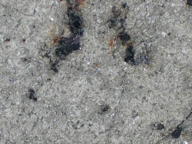 """NWA 3171 - shergotyt (mars). Ten meteoryt z Marsa ma dość charakterystyczną, krystaliczną (belkową) budowę. Same Shergotyty są dość zagadkowymi meteorytami, bowiem wedle badań są bardzo """"młode"""" - ich wiek to raptem ok 180 mln lat.  Źródło zdjęcia:   http://www.pallasite.ca/"""